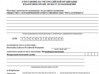 Регистрация организаций (ООО)