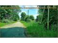 ucastok-so-vsemi-kommunikaciyami-334-sotki-izs-v-d-vityazi-small-1