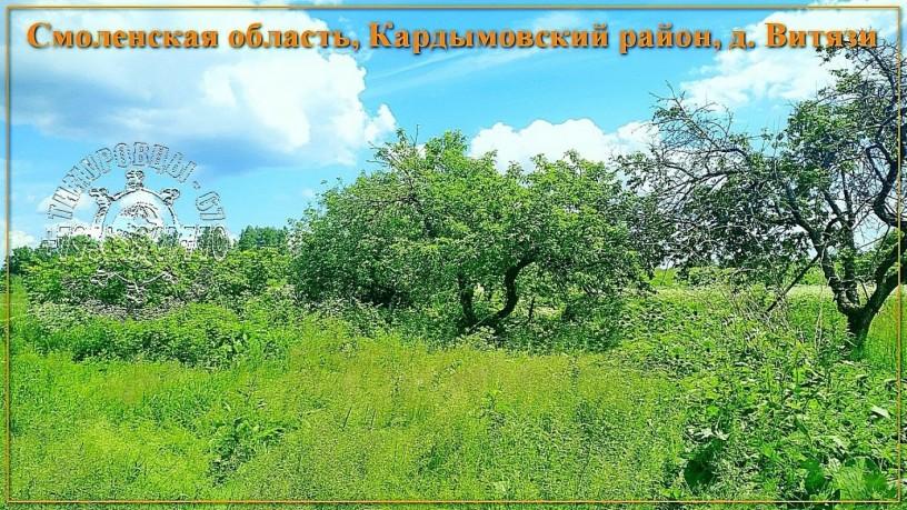 ucastok-so-vsemi-kommunikaciyami-334-sotki-izs-v-d-vityazi-big-2