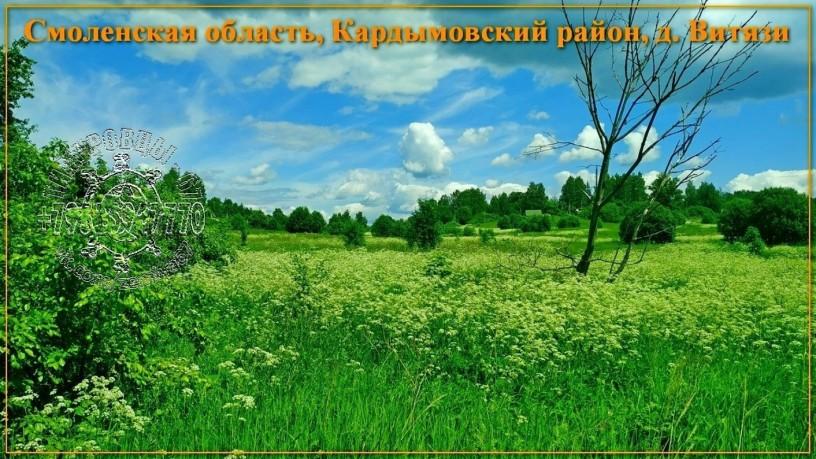 ucastok-so-vsemi-kommunikaciyami-334-sotki-izs-v-d-vityazi-big-5