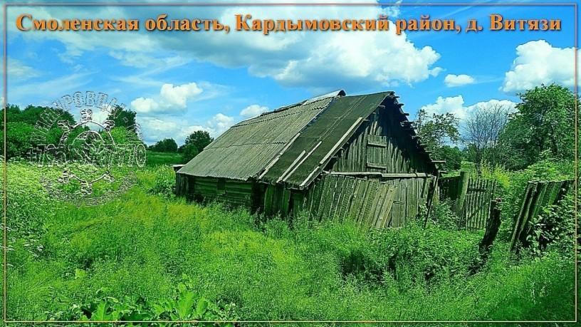 ucastok-so-vsemi-kommunikaciyami-334-sotki-izs-v-d-vityazi-big-0