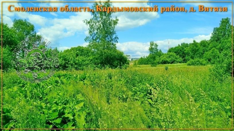 ucastok-so-vsemi-kommunikaciyami-334-sotki-izs-v-d-vityazi-big-3
