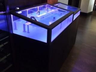 Торговый аквариум для морепродуктов