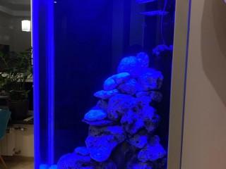 Изготовление по вашим размерам морского аквариума